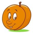 Fresh apricot cartoon vector image vector image