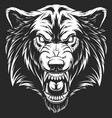 head ferocious wolf vector image vector image