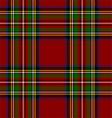 Royal Stewart Tartan vector image vector image