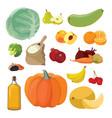 vegetables fruits berries cereals oil vector image vector image