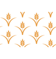 Wheat Seamless pattern vector image vector image