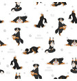 yoga dogs poses and exercises bernese mountain vector image vector image