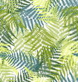 Fern seamless pattern vector image