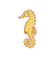 hand drawn seahorse marine and oceanic animal vector image vector image