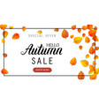 hello autumn sale lettering banner special offer vector image vector image