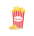 middle sized full red-and-white striped popcorn vector image