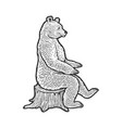 bear sits on tree stump sketch vector image vector image