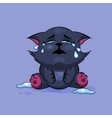 Black cat is crying vector image vector image