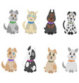 colorful hand drawn pets set vector image