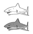 gray shark sketch doodle hand drawn vector image vector image