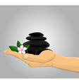Hand holding Spa stones andflower vector image vector image