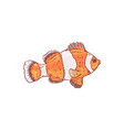 sea and ocean orange and white striped clownfish vector image vector image