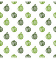 watermelon food seamless pattern vector image