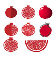 whole pomegranate design juicy fresh fruit icon vector image