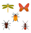 collection of bugs and insects on vector image