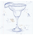 Cocktail alcohol Margarita vector image
