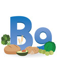 foods rich in vitamin b9 vector image vector image