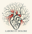 human heart with branches emblem vector image