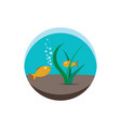 aquarium underwater fish and plants vector image