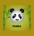 cute color 3d panda vector image