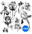 Collection of hand drawn flowers vector image
