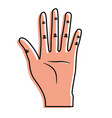 nice hand with all fingers and palm vector image vector image
