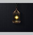 ornamental arabic lantern glowing at night vector image vector image