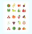 set of vegetarian organic food flat fruit vector image vector image