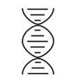 Chromosome line icon on white background vector image