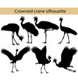 crowned crane silhouette vector image vector image