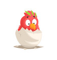 cute red parrot baby hatching from the egg vector image
