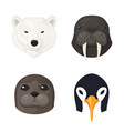 polar animals set vector image