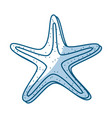 shadow starfish cartoon vector image