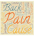 Cholecystitis and Back Pain text background vector image vector image