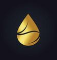 gold bio organic droplet logo vector image vector image