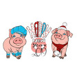 pigs in winter clothes vector image