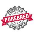Purebred stamp sign seal vector image