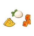 sketch mozzarella cheddar emmental cheese vector image