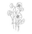 vintage botanical linear flower vector image