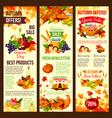 autumn sale banner set of fall harvest celebration vector image vector image