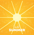 orange pulp and hello summer text vector image