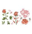 pink roses hand drawn elements vector image
