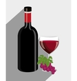 Wine drink graphic design with icons vector image vector image