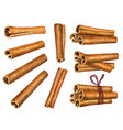 cinnamon sticks isolated on white background top vector image vector image