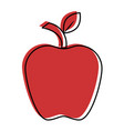 delicious apple fruit vector image