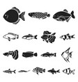 different types of fish black icons in set vector image vector image