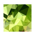 Electric Lime Green Abstract Low Polygon vector image vector image
