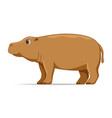 hippopotamus animal standing on a white background vector image