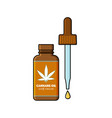 open bottle with cannabismarijuana tincture oil vector image