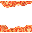 seamless border of tomato slices vector image